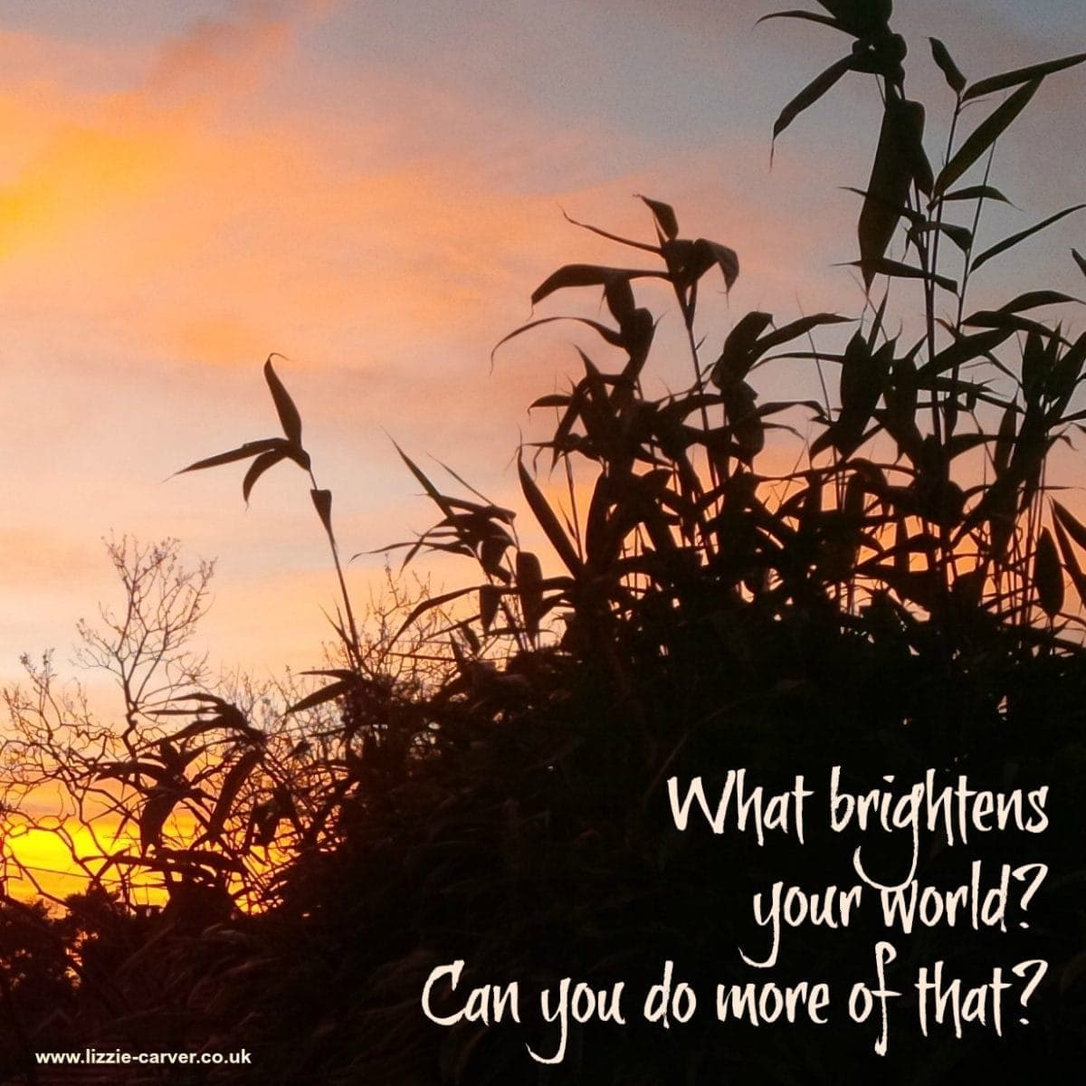 What brightens your world? Lizzie Carver, Reiki & NLP